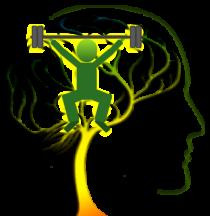 Cerveau Gym